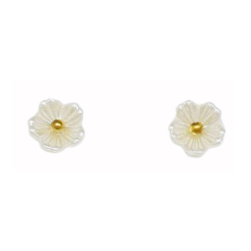 Stainless Steel And Resin Ear Studs (SES42G)