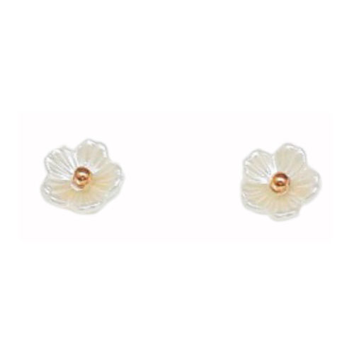 Stainless Steel And Resin Ear Studs (SES42RG)