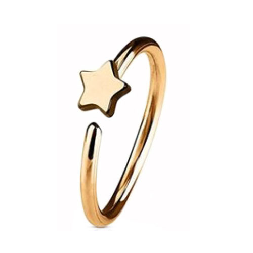 Rose Gold PVD Coated Steel Nose Ring Fixed Star (NR273RG)