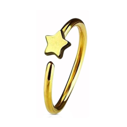 Gold PVD Coated Steel Nose Ring Fixed Star (NR273G)