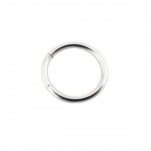 316L Surgical Steel Segment Rings (PFMT*)