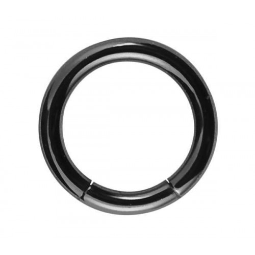 Black PVD Coated Steel Segment Rings (PFBMT)