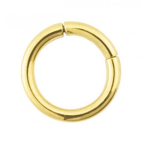 Gold PVD Coated Steel Segment Ring (PFGMT**)