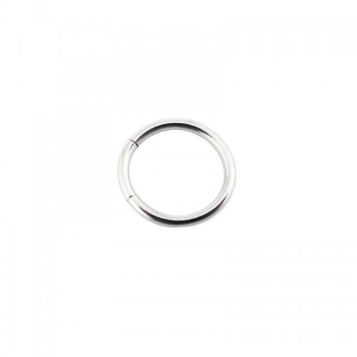 Titanium Segment Ring (TMT**)