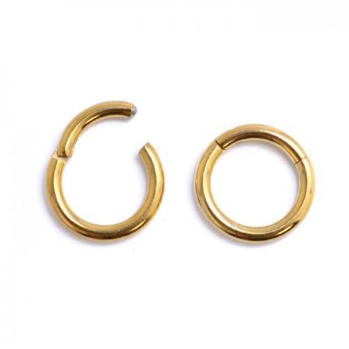 Gold Steel Hinged Segment Ring (PFGHR*)